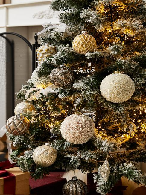 Jaký vánoční stromek vybrat