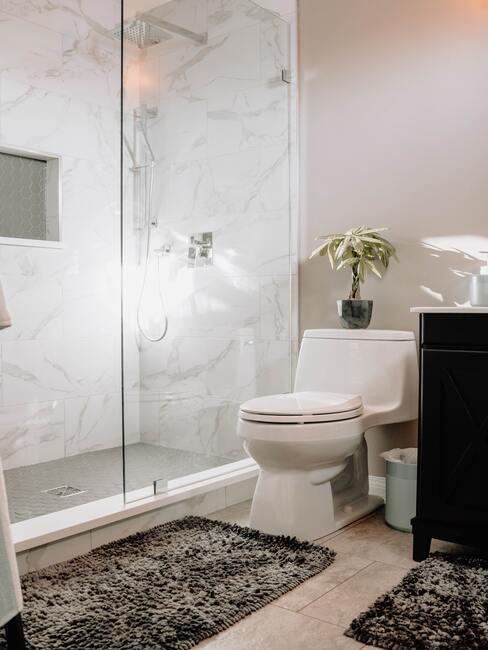 jak vyčistit záchod