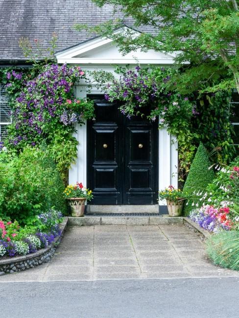 Vorgartengestaltung mit Blumen und Sträuchern