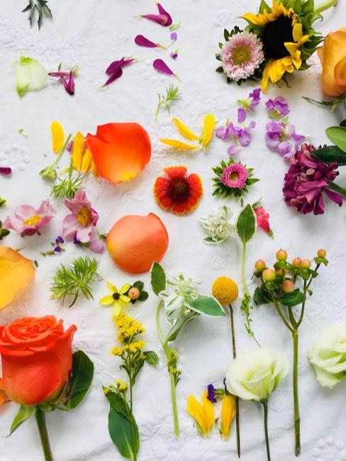 Różnorodne kolorowe kwiaty na białym obrusie