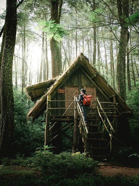 Kleines Baumhaus in grünem Wald