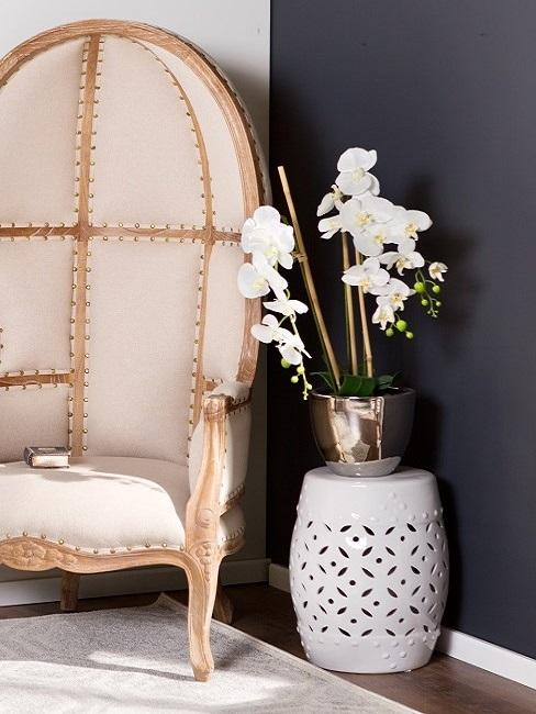 Storczyk w złotej osłonce na stoliku pomocniczym na tle czarnej ściany