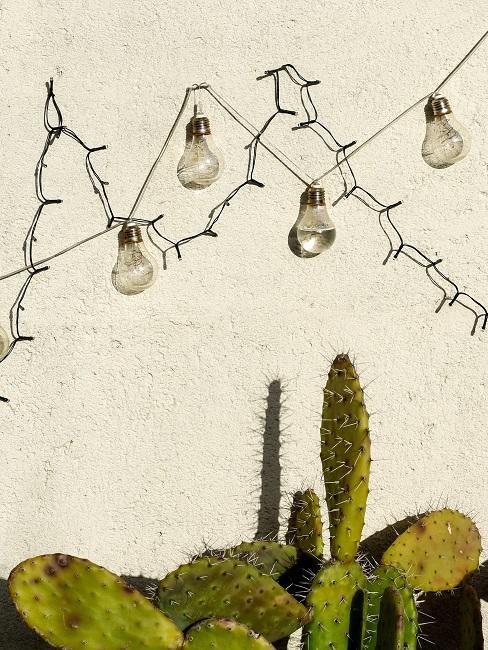 Lichterketten an einer Hauswand über Kakteen