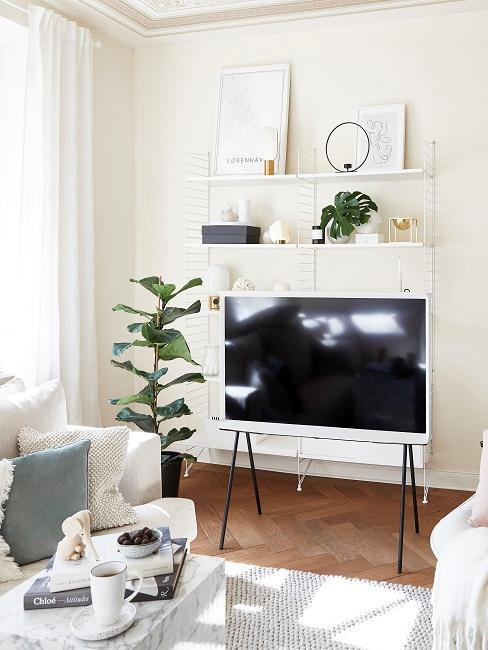 Gemütliches Wohnzimmer mit grünen Pflanzen neben dem TV.