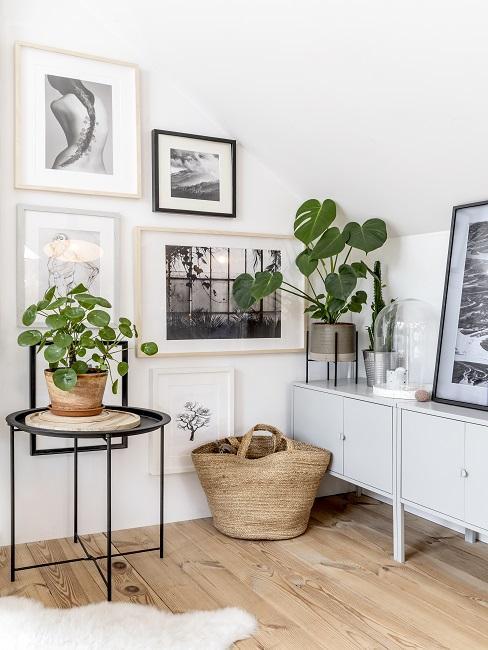 Atelier einricjten mit Bildern und Pflanzen