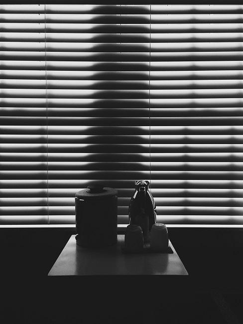 Fenster verdunkeln geschlossene Jalousie