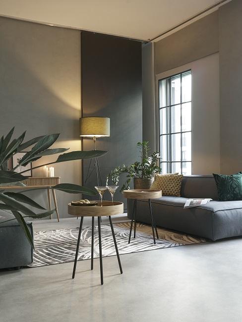 Luxus Wohnung einrichten Wohnzimmer mit Sofa, Teppich und Pflanzen