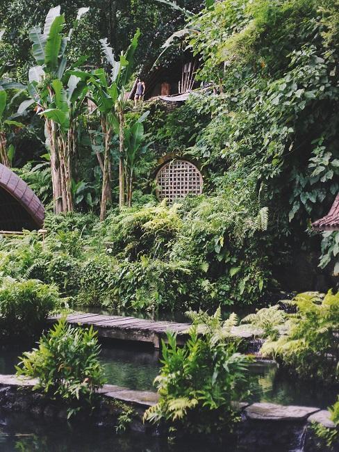 Terrasse dekorieren gestalten asiatisch Pflanzen Teich
