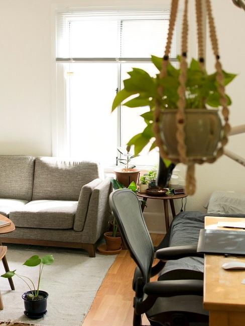 Makramee Blumenampel Wohnzimmer Pflanze