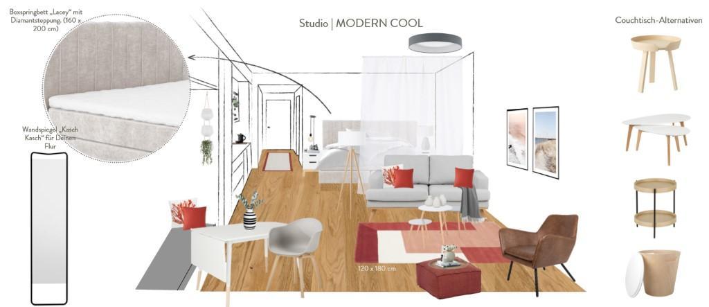 Kleines Appartment einrichten Vorschlag Modern Cool