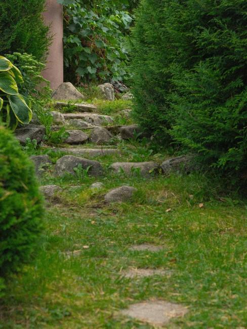 Steinplatten und Stufen in kleinem Garten