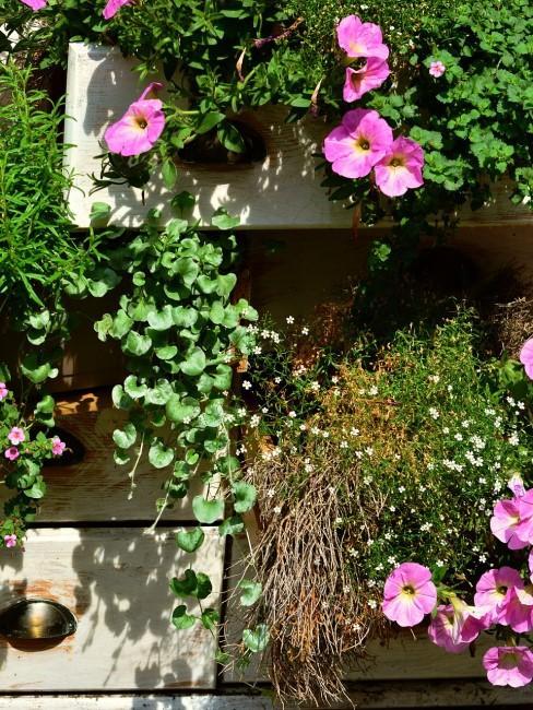 Hängepflanzen im kleinen Garten als Vertical Gardening Idee