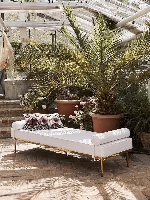 Weißes Daybed mit Ethno-Kissen vor Palmen in Wintergarten