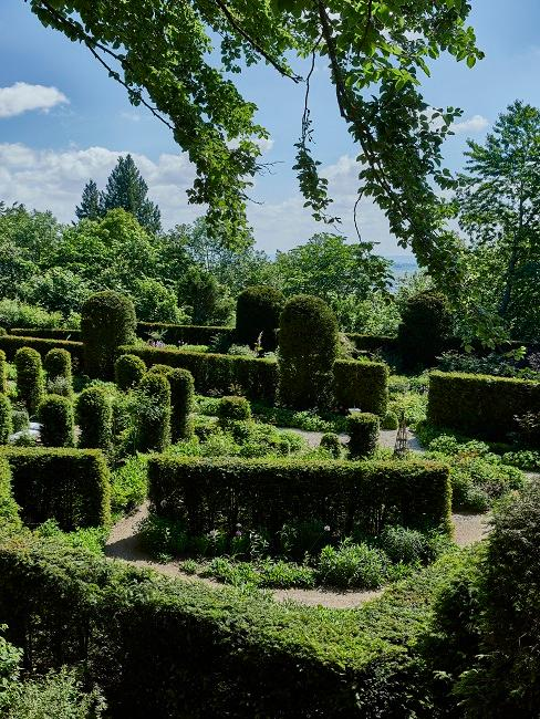 Wallerstein Gardens Hecken Bäume