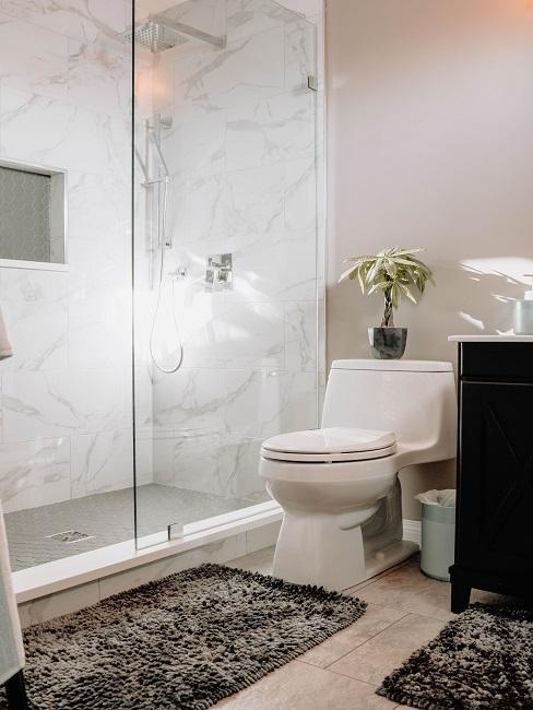 Walk-in-Dusche neben WC