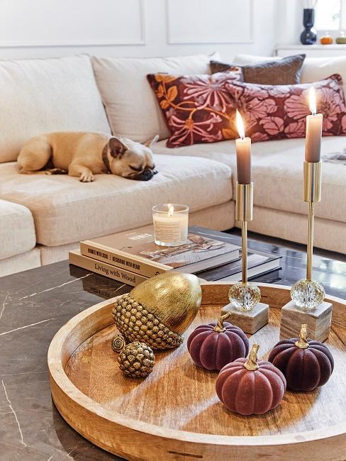 Couchtisch mit Tablett, zwei Kerzen und Herbstdeko, im Hintergrund ein Hund auf einem Sofa