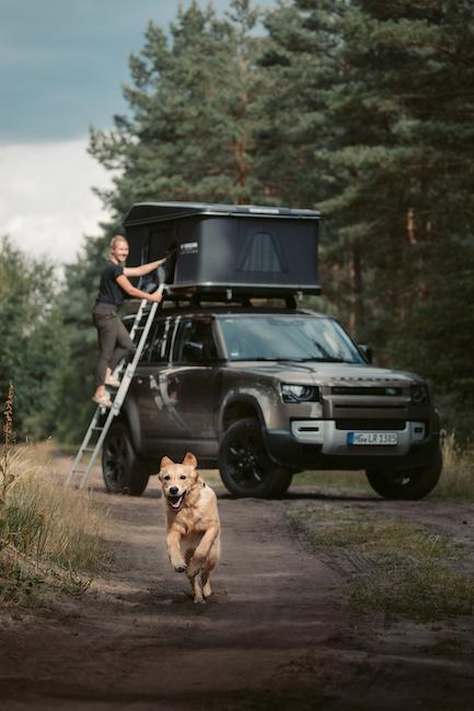 Rennender Hund vor Van im Wald