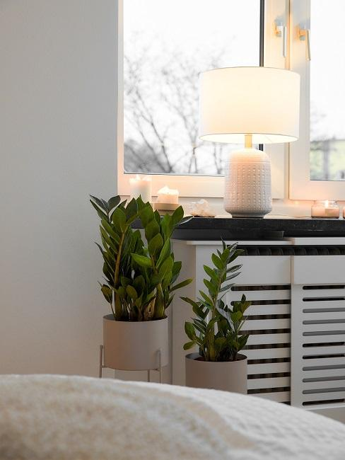Feng Shui Schlafzimmer Pflanzen Kerzen Beleuchtung