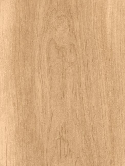 Holzarten Erle