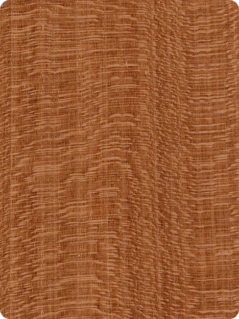 kirschbaumholz Aussehen Maserung Farbe