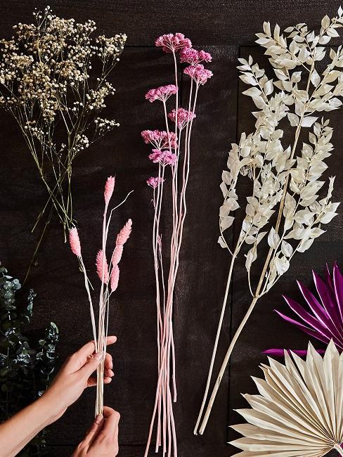 Trockenblumen Auswahl