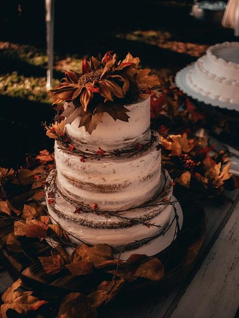 Nahaufnahme Winter Torte