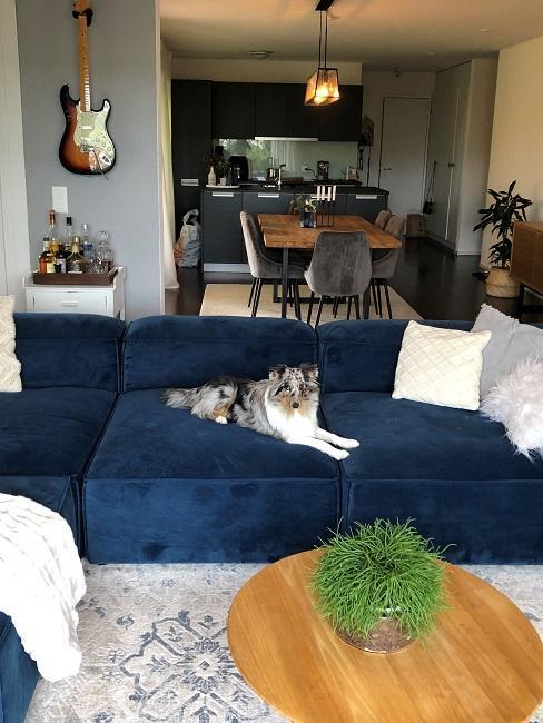 neue Wohnung einrichten Nachher Wohnbereich Sofa
