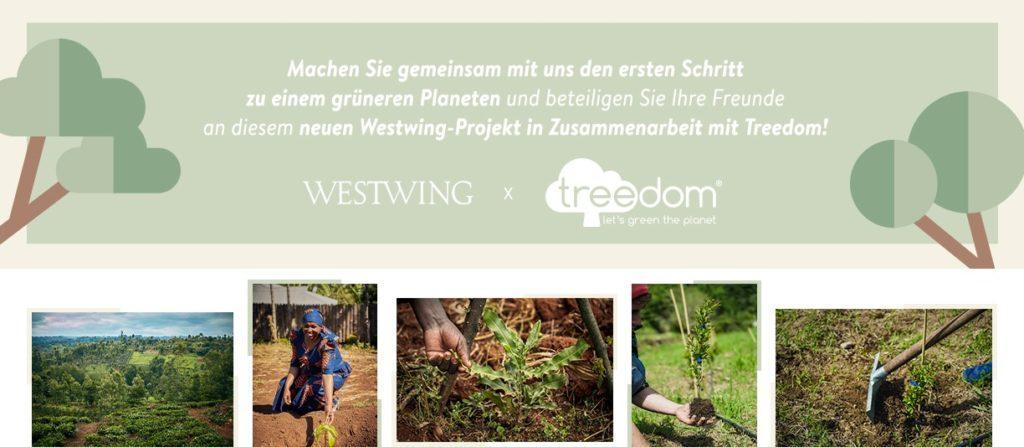 Mit Treedom einen Baum schenken