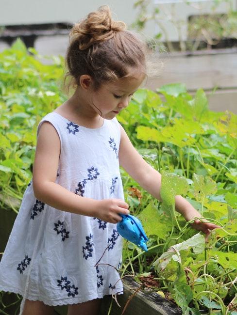 Gärtnern mit Kindern in der Stadt im Gemeinschaftsgarten