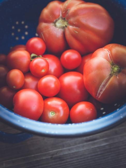 Tomaten vom eigenen Balkon