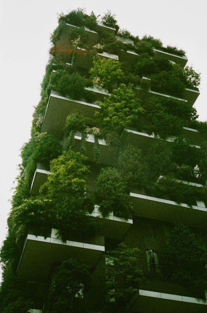 Urban Gardening und Urban Farming als Trends
