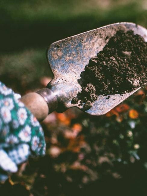 Gartenarbeit mit einer Schaufel voller Erde im Frühling