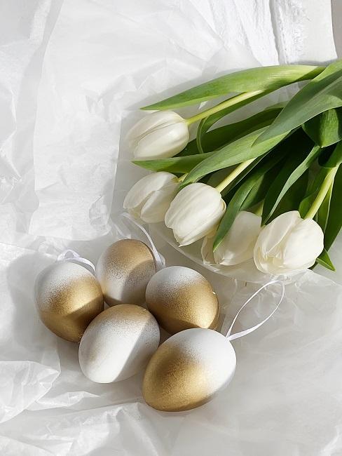 Ombre Eier und Tulpen