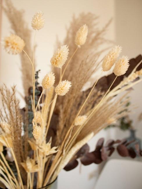 Trockenblumen mit Eukalyptus