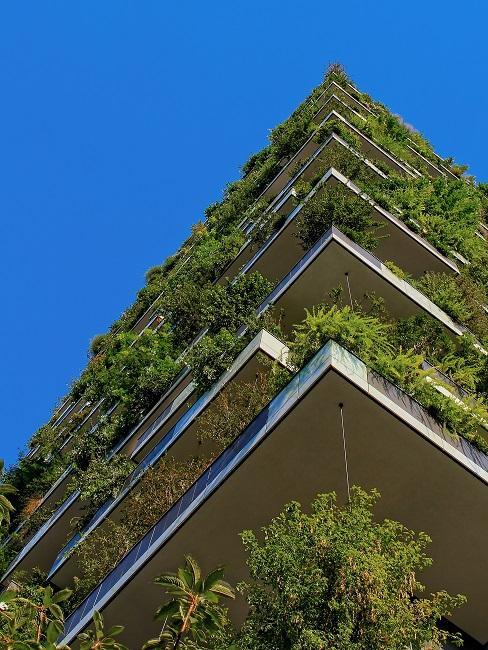 Nachhaltigkeit Haus grüne Pflanzen