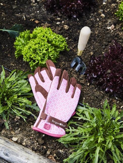 Gärtnern für Anfänger mit Handschuhen im Gemüsebeet