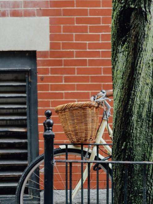 Ein helles Fahrrad mit Korb steht hinter einem Baum