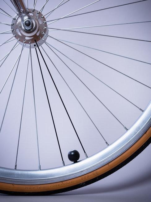 Fahrrad Speichen und Reifen reinigen