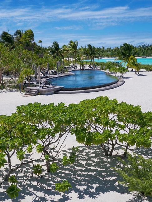 Nachhaltige Hotels The Brando Pool Strand