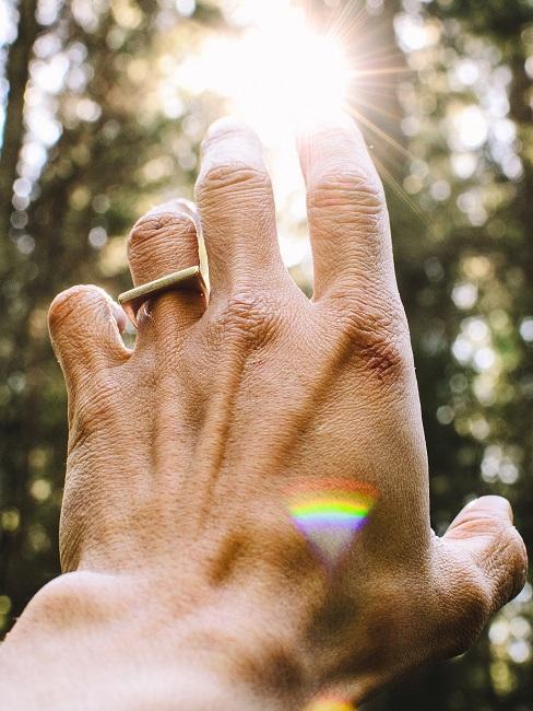 Waldbaden Hand Bäume Licht