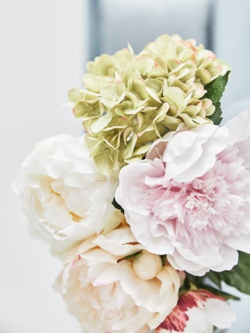 Pfingstrosen und Hortensien sorgen für Frühlingsstimmung