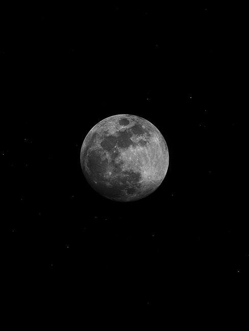 Mit dem Mondkalender im Einklang mit der Natur gärtnern
