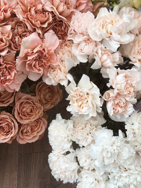 Rosa und weiße Blüten