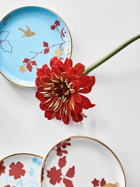 Blume in Rot und passendes Geschirr