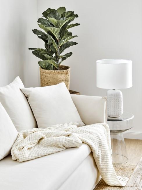 Eine helle Couch und Pflanzen im Wohnzimmer