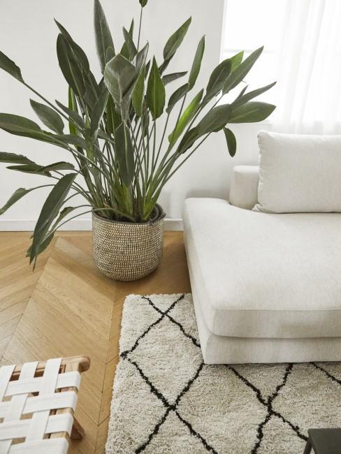 Weiße Couch und Beni Ourain Teppich in Schwarz und Weiß