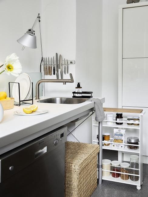 Küche eingerichtet mit Arbeitszeile und Standregal