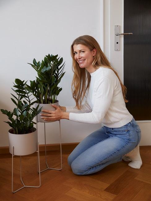 Slow Living Pflanzen in Kuebeln auf Boden
