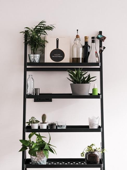 Slow Living Standregal Pflanzen