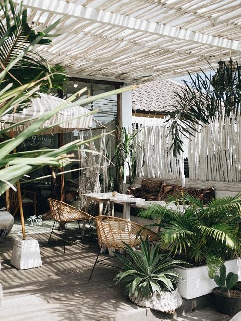 Terrasse überdacht in Weiß und Bambuspflanzen